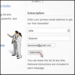 wpnewsman subscription form